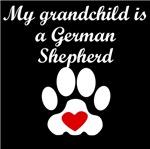 German Shepherd Grandchild