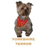 Yorkshire Terror