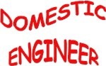 DOMESTIC ENGINEER