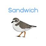 Sandwich, MA T-Shirts