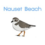 Nauset Beach T-Shirts