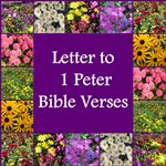 LETTER TO PETER