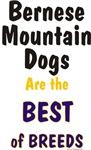 Bernese Mountain Dogs Best Breeds Design