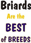 Briards are the Best of Breeds Unique Gifts Items
