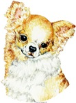Long Coat Chihuahua Unique Gifts & Products