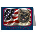Creative Cairn Terrier Post Cards Note Cards