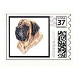 Creative Mastiff Post Cards Note Cards & STAMPS!