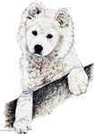 Samoyed Puppy Dog Portrait Gifts Products
