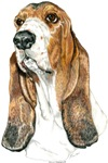 Bountiful Basset Hound Dog Products & Gifts