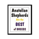 Anatolian Shepherd Best of Breeds Products & Gifts