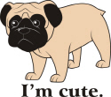 Dog Love : Dog Shirts, Sweatshirts, Bags, Mugs, Cl