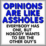 Opinions are like assholes. Everybody has one...