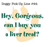 Dog Tees with Doggy Pick-Up Lines