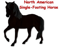 North American Single-Footing Horse