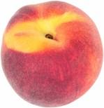 Atlanta Fuzzy Peach