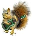 Squirrel Ukulele