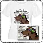 Brain of Chocolate Labrador T-Shirts and Gifts