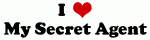 I Love My Secret Agent