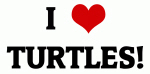 I Love TURTLES!