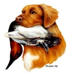 Toller With Duck design