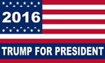 Trump 2016 Flag