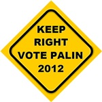 Keep right vote Palin