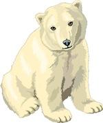 Polar Bear Gift