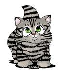 Tabby Cutie Face Kitten