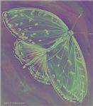 Butterfly, go green,