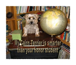 My Cairn Terrier is Smarter Than Your Honor Studen