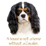 A house is not a home without a Cavalier