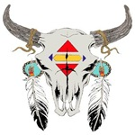 Bison Skull Indian