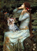 OPHELIA<br>With a Yorkshire Terrier (#13)