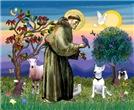 Saint Francis (JF)