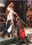 THE ACCOLADE<br>& Bernese Mountain Dog