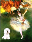 DANCER<br>& Bichon Frise
