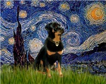 STARRY NIGHT<br>& Rottweiler