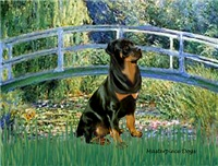 LILY POND BRIDGE<br>& Rottweiler