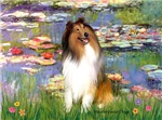 WATER LILIES<br>& Sable & White Collie