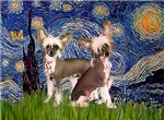 STARRY NIGHT<br>& Chinese Crested