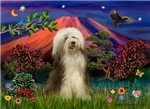 MT FUJI<br>& Bearded Collie (brown)