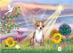 CLOUD ANGEL<br>& Chihuahua (fawn)