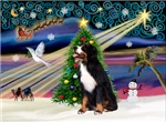 CHRISTMAS MAGIC<br>& Bernese Mountain Dog