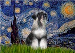 STARRY NIGHT<br>& Minaiture Schnauzer (nat)#6