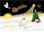 NIGHT FLIGHT<br>& Bull Terrier