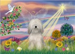 CLOUD ANGEL<br>& White Tibetan Terrier#2