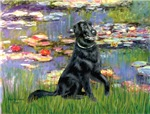 WATER LILIES<br>&Flat Coated Retriever