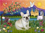 FANTASY LAND<br>& Fawn French Bulldog