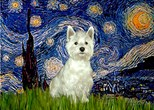 STARRY NIGHT<br>& West Highland Terrier#8