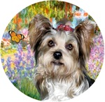 Yorkshire Terrier(Briewer)<br>Garden at Giverney